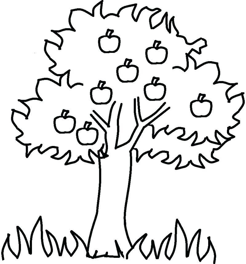 Tranh tô màu cây xanh đơn giản cho bé