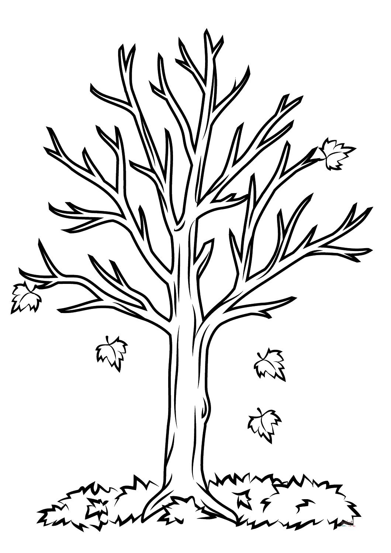 Tranh tô màu cây xanh lá rụng