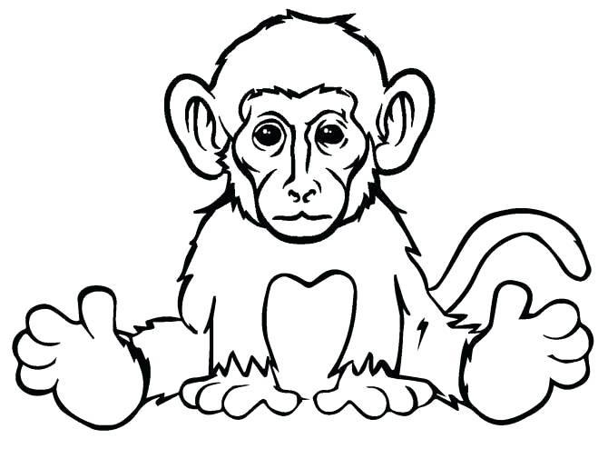 Tranh tô màu con khỉ đang ngồi