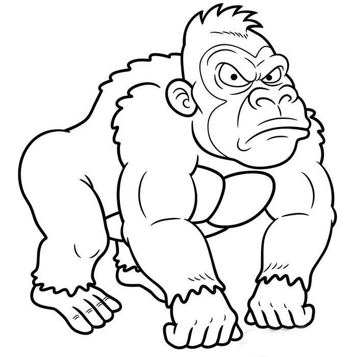 Tranh tô màu con khỉ đột
