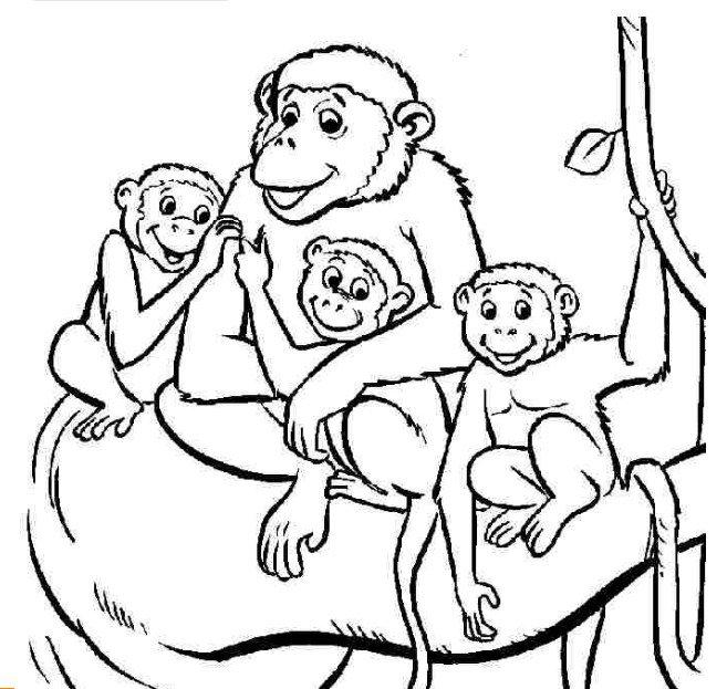 Tranh tô màu đàn khỉ