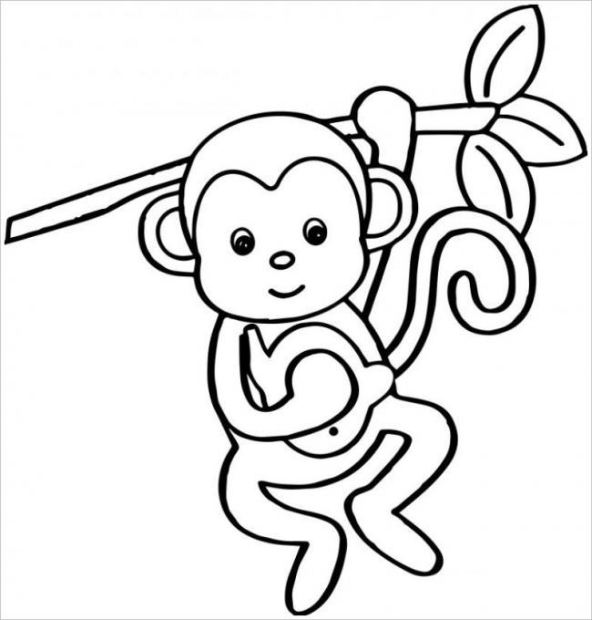 Tranh tô màu khỉ con