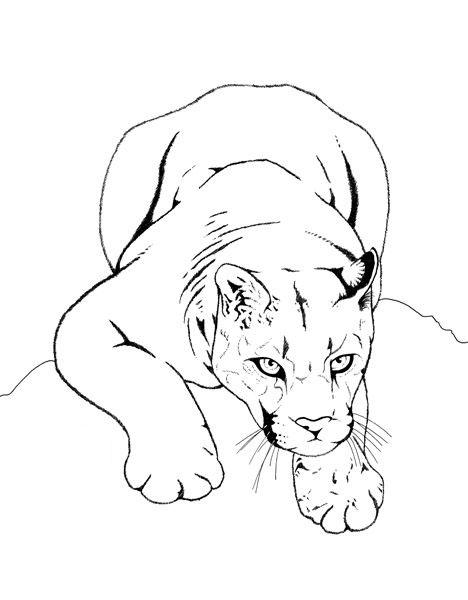 Tranh tô màu sư tử săn mồi