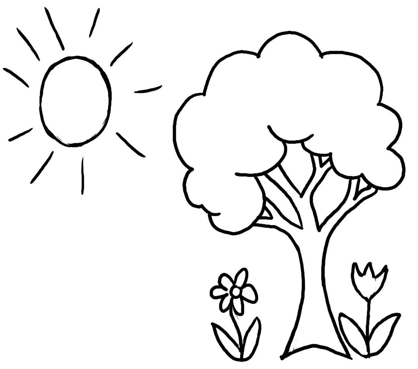 Tranh vẽ cây xanh tô màu