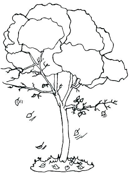 Tranh vẽ tô màu cây xanh đẹp nhất