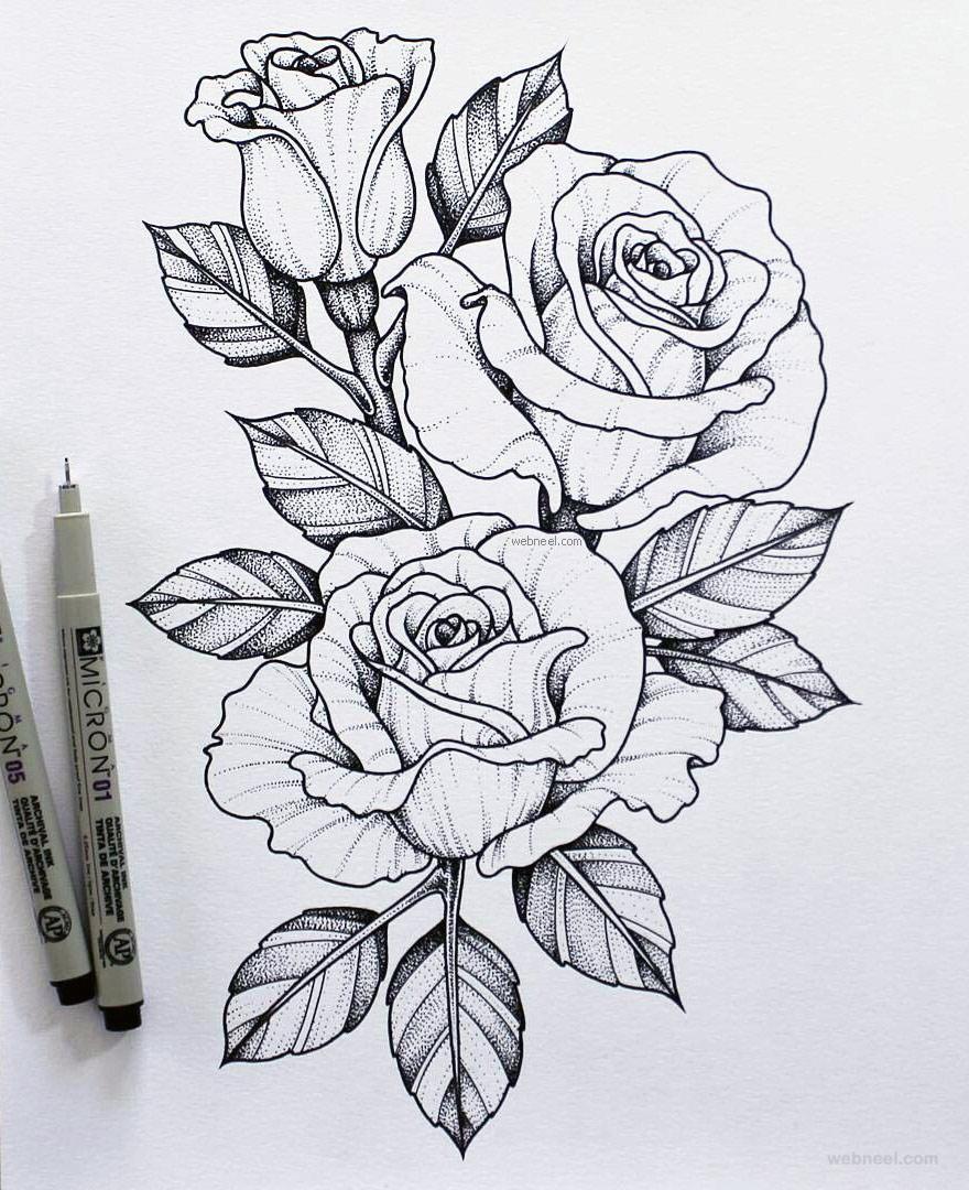 Vẽ hình ảnh hoa hồng đẹp nhất bằng bút chì