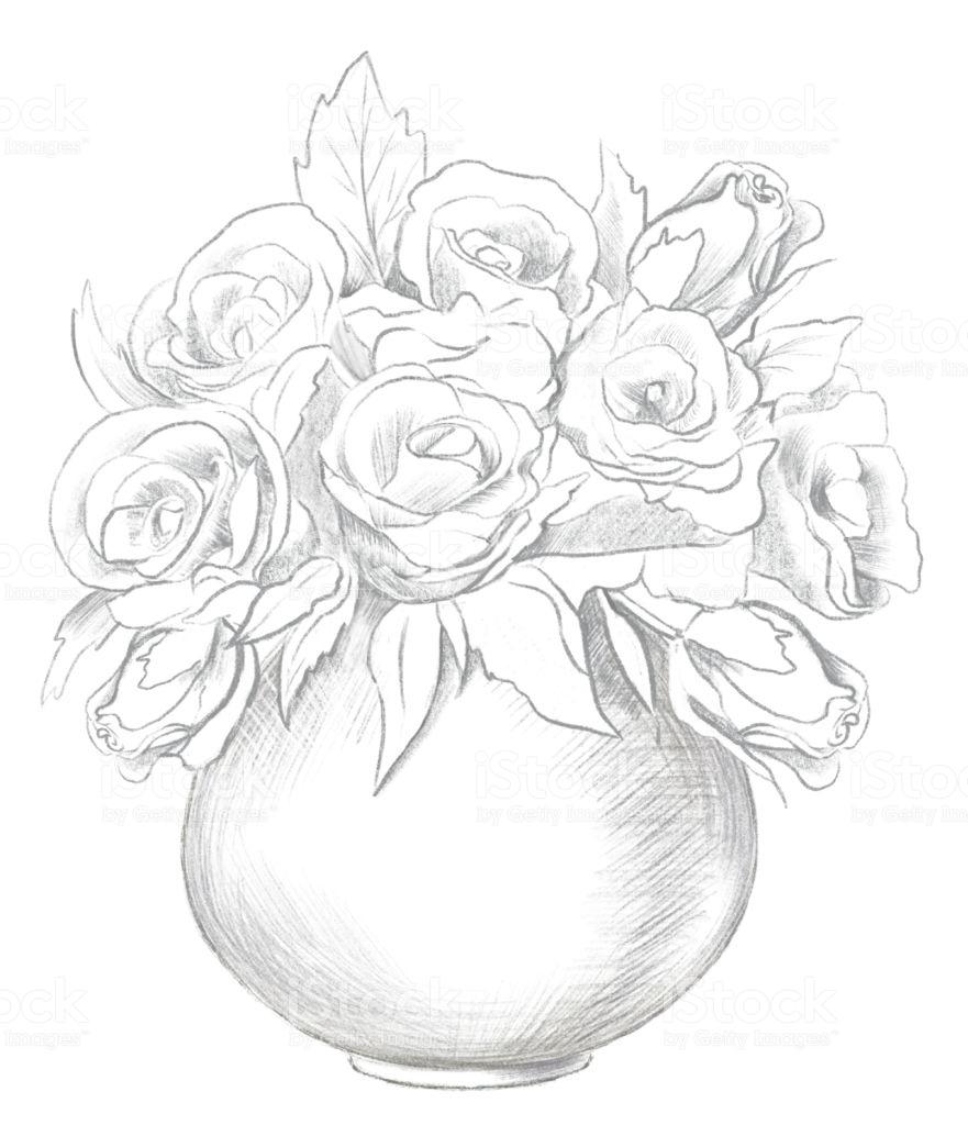 Vẽ lọ hoa hồng bằng bút chì hình ảnh đẹp nhất