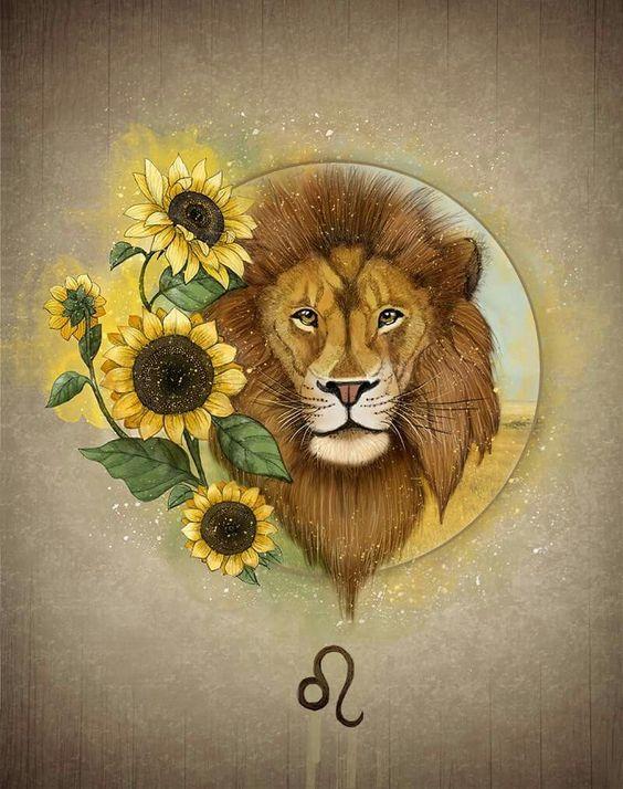 Ảnh cung sư tử đẹp nhất