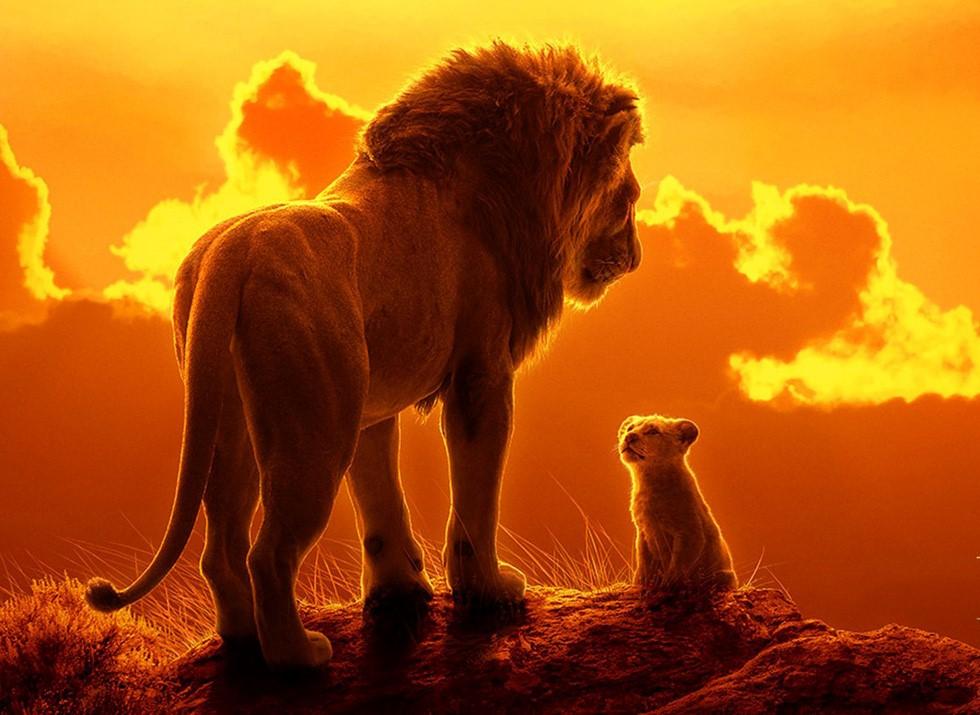 Ảnh sư tử đẹp nhất
