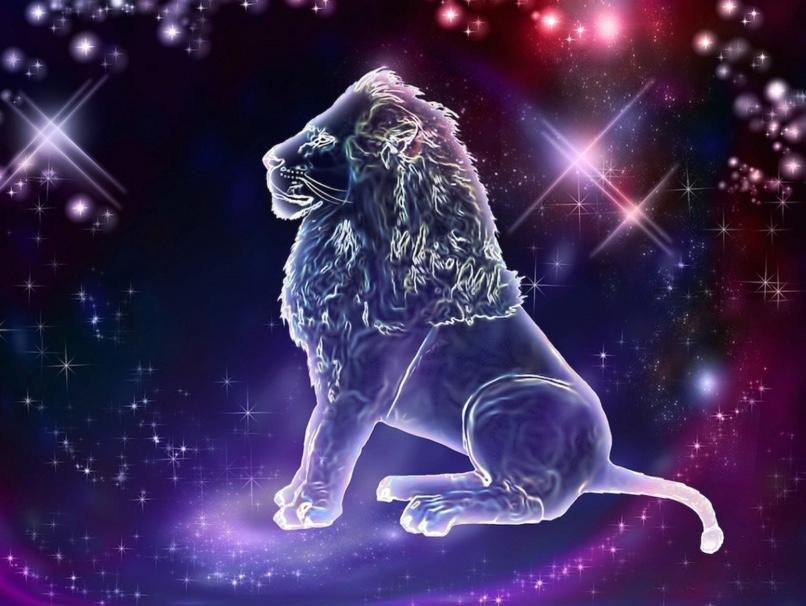 Hình ảnh cung sư tử