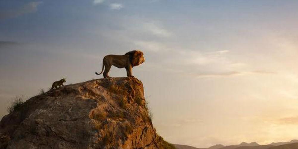 Hình ảnh trong phim vua sư tử