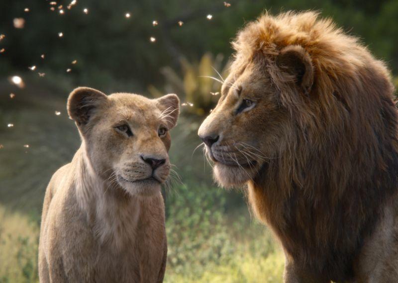 Hình ảnh vua sư tử