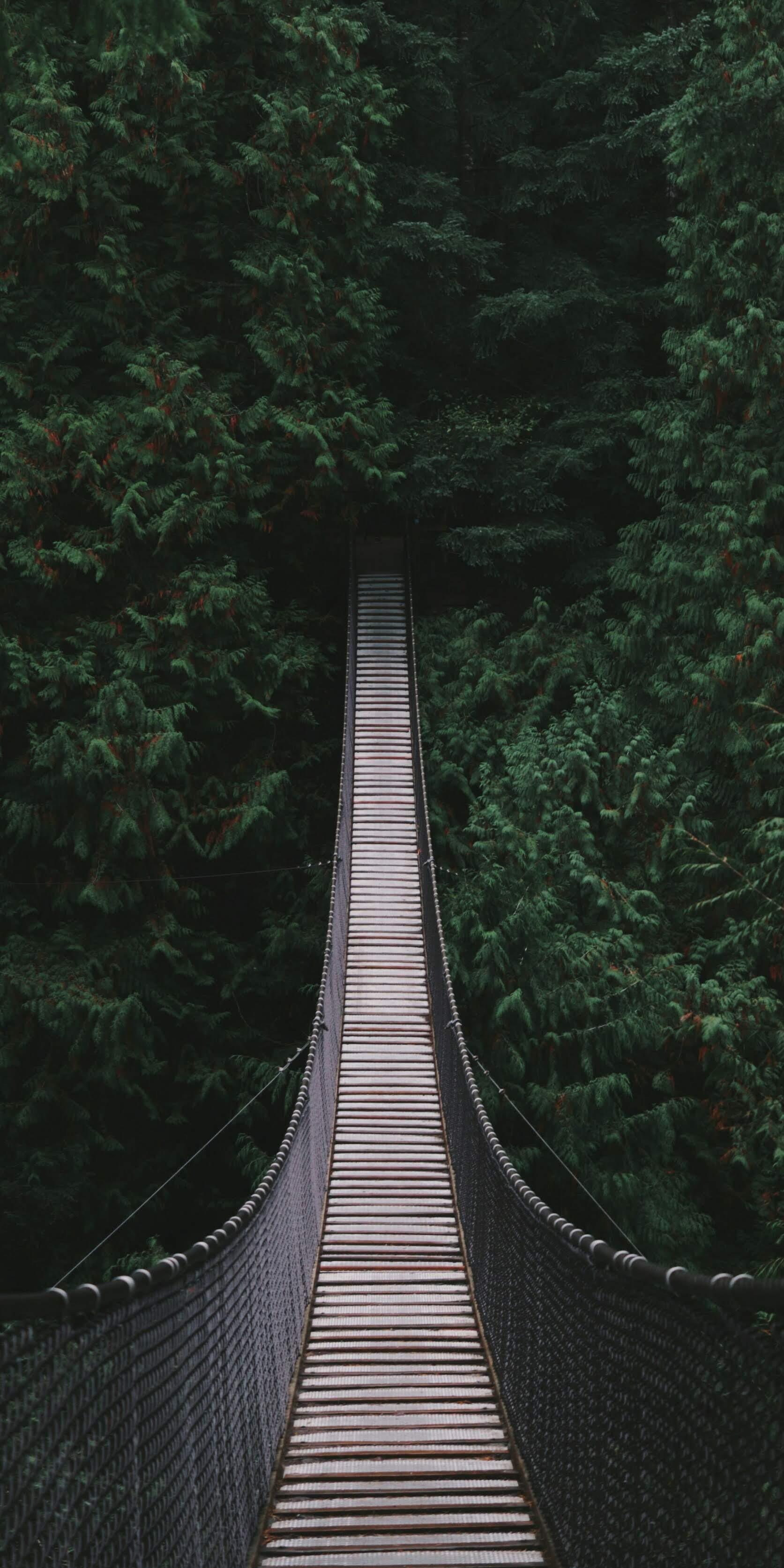 Hình nền điện thoại thiên nhiên độc đáo