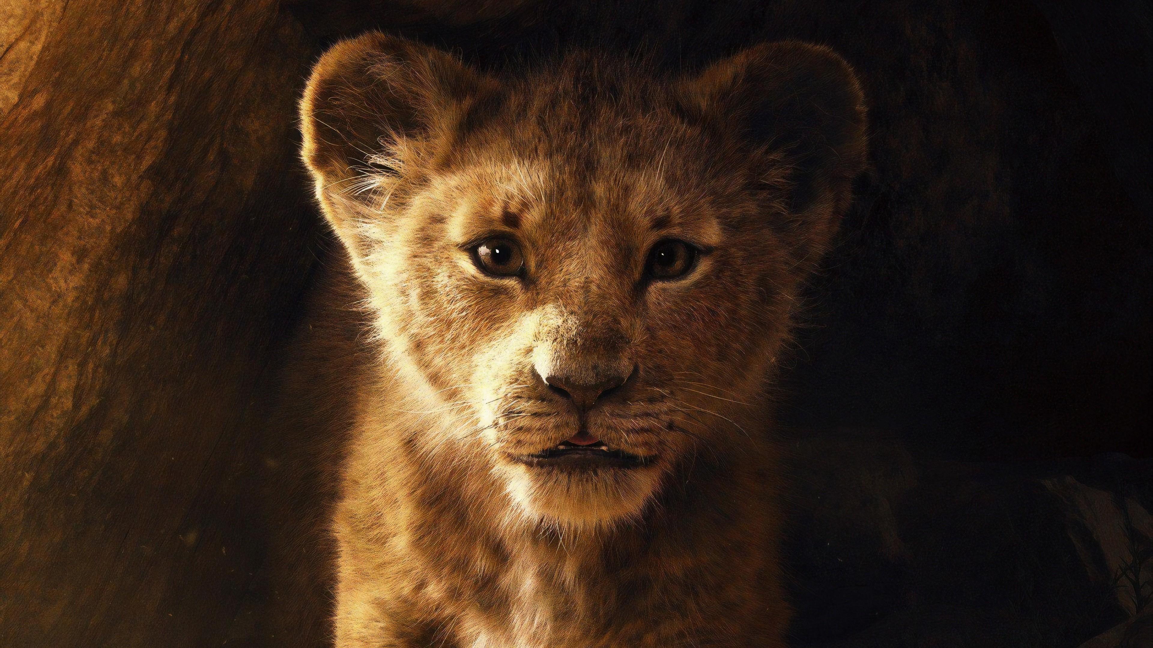 Hình nền vua sư tử cho máy tính