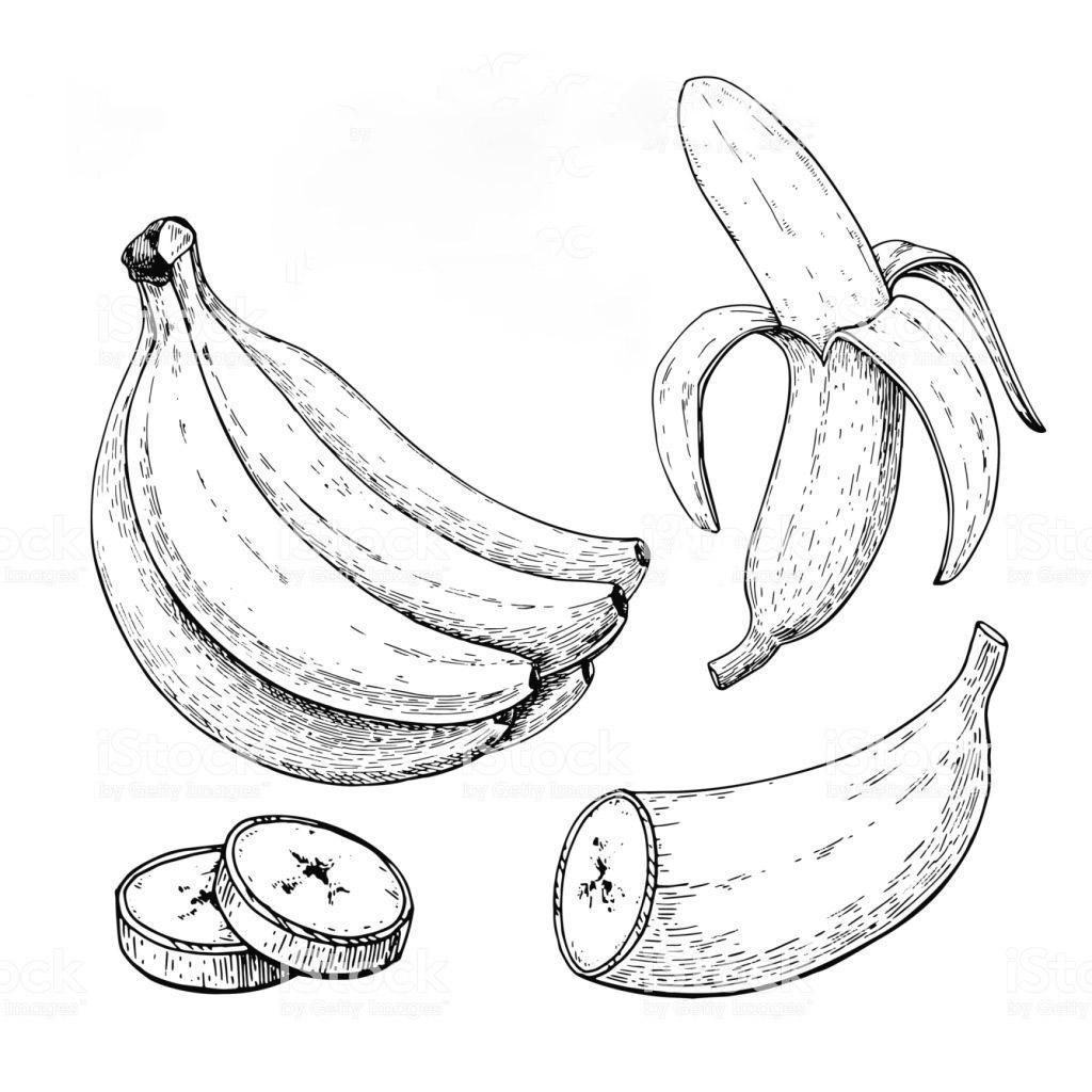 Tranh minh họa quả chuối tô màu