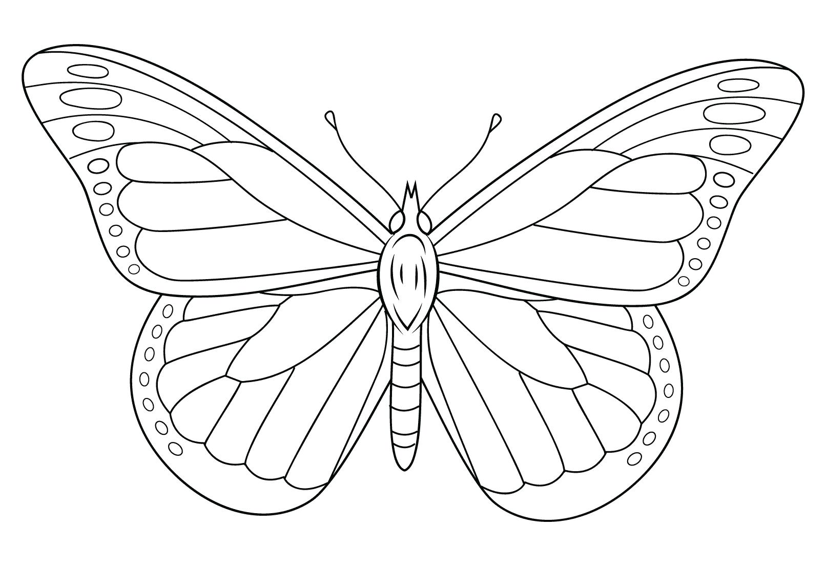 Tranh tô màu con bướm cho bé