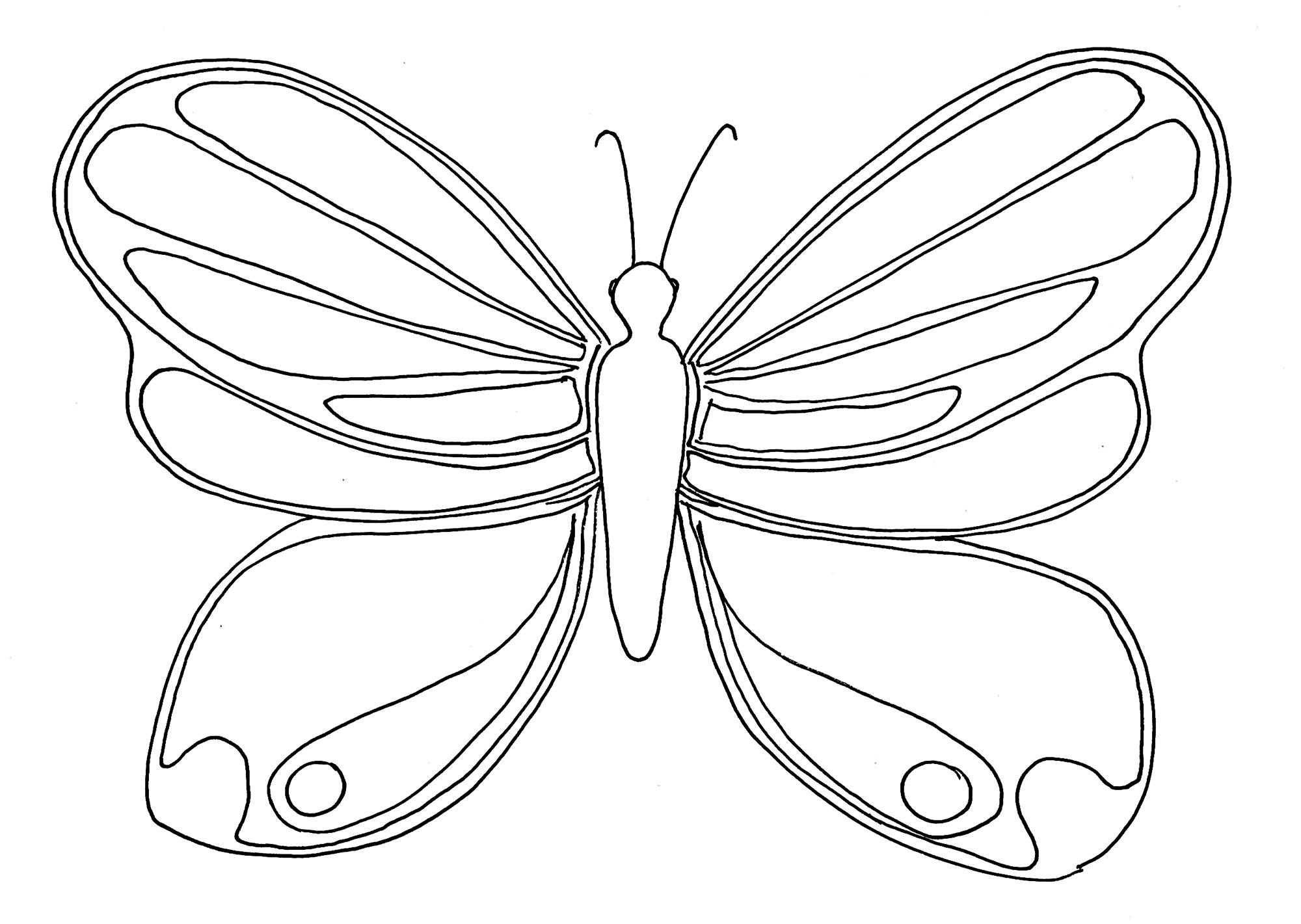 Tranh tô màu con bướm đơn giản cho bé cực đẹp