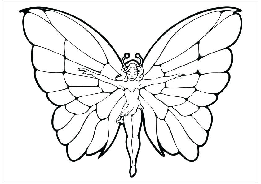 Tranh tô màu con bướm đơn giản nhất cho bé
