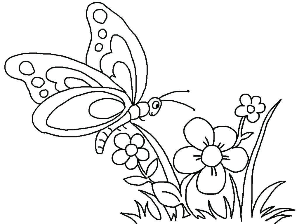 Tranh tô màu con bướm và hoa