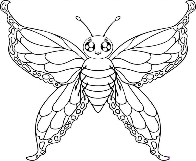 Tranh tô màu con bướm xòe cánh đẹp nhất