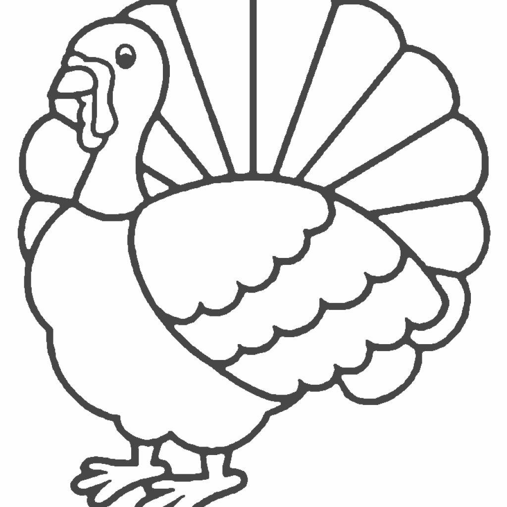 Tranh tô màu con gà đơn giản