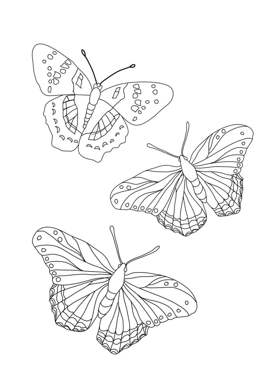 Tranh tô màu đàn bướm đẹp nhất cho bé