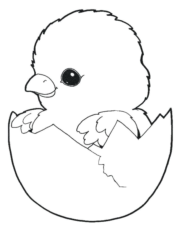 Tranh tô màu gà con mới nở cho bé