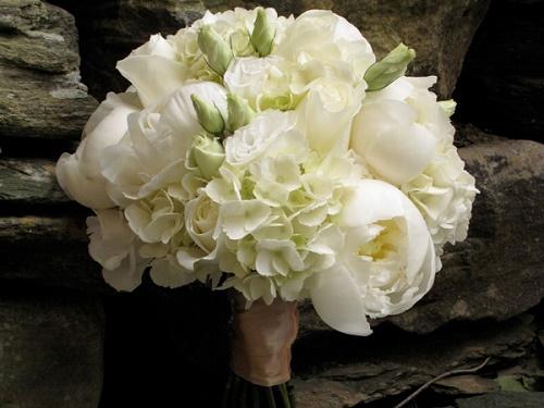 Bó hoa mẫu đơn trắng đẹp không sao tả xiết