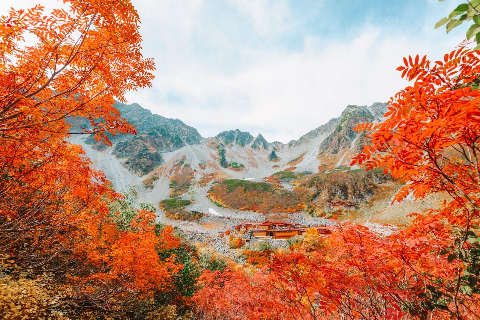 Cảnh đẹp rừng phong lá đỏ tại Nhật