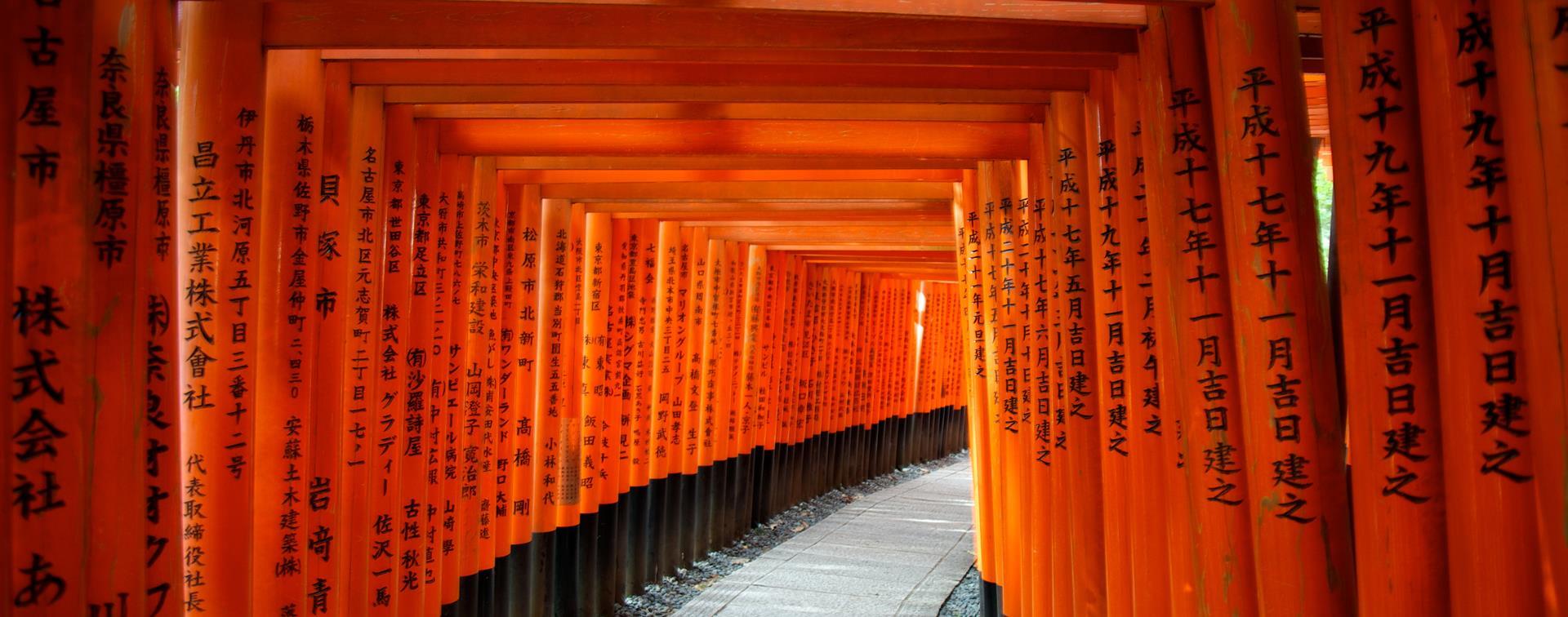 Cảnh những cái cổng Tori nối liền rất đẹp tại Nhật