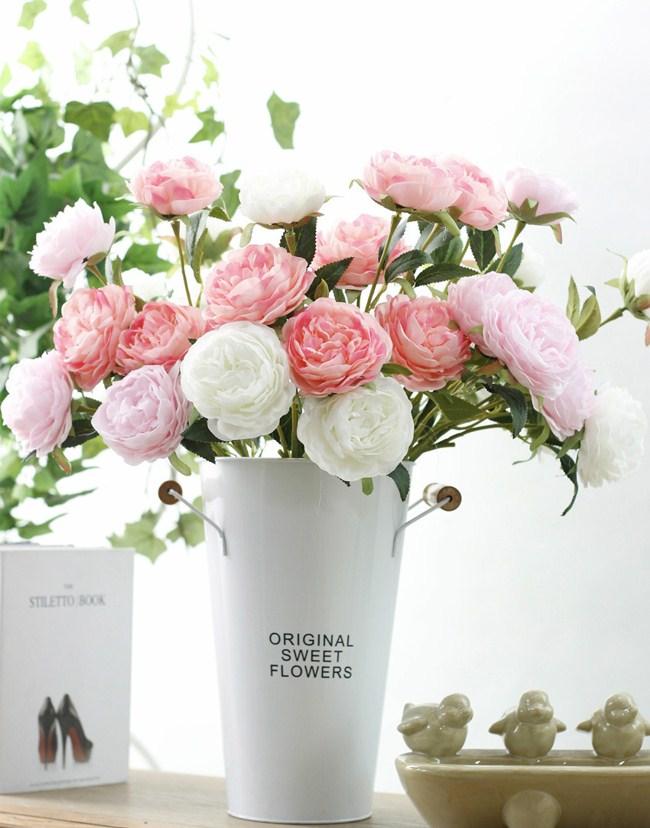 Mẫu đơn trắng mẫu đơn hồng thật đẹp