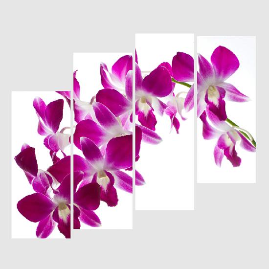Tranh ghép hoa lan tím rất đẹp