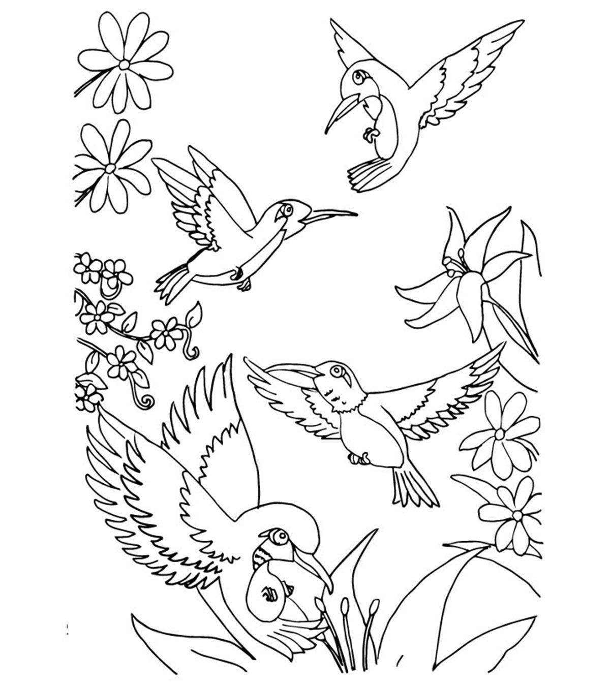 Tranh tô màu bốn chú chim bay lượn trong vườn
