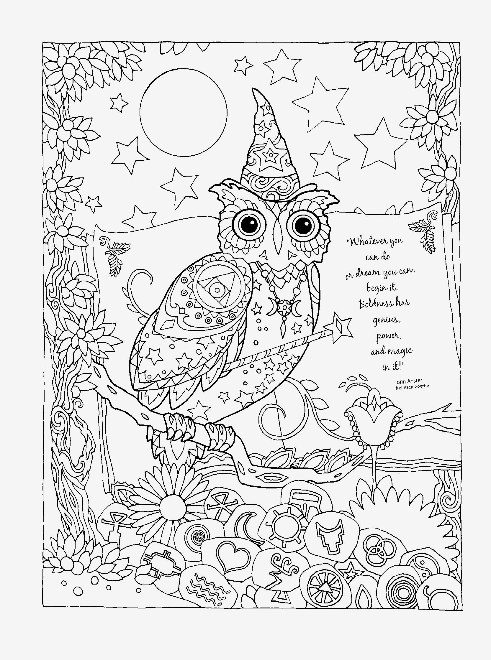 Tranh tô màu chim cú nhiều họa tiết