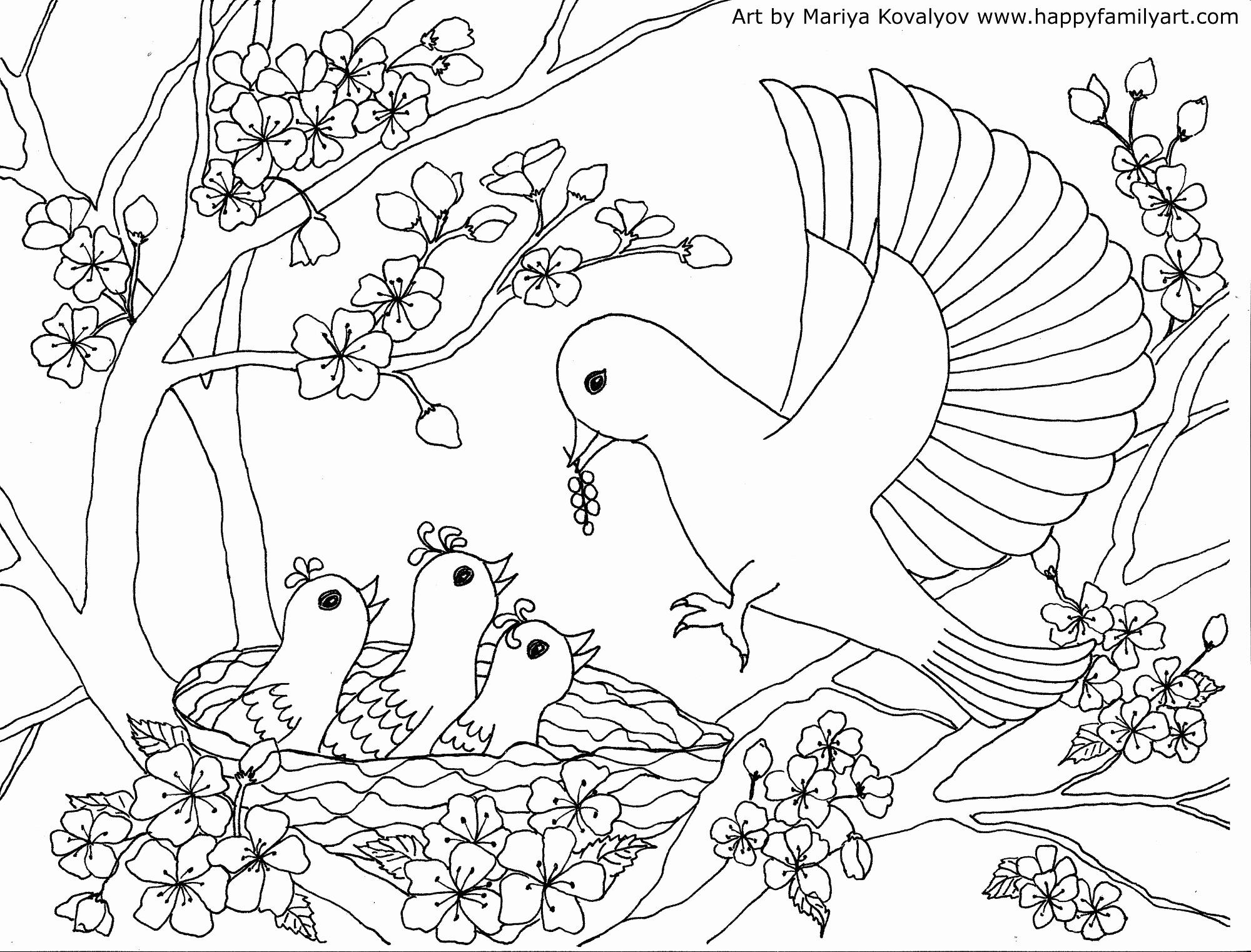 Tranh tô màu chim mẹ mớm mồi