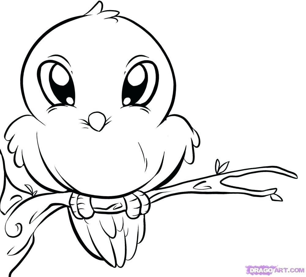 Tranh tô màu chim phong cách cartoon