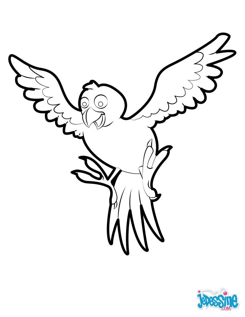 Tranh tô màu chim tung hai cánh