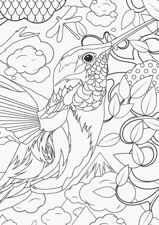 Tranh tô màu chim và cây cỏ hoa lá