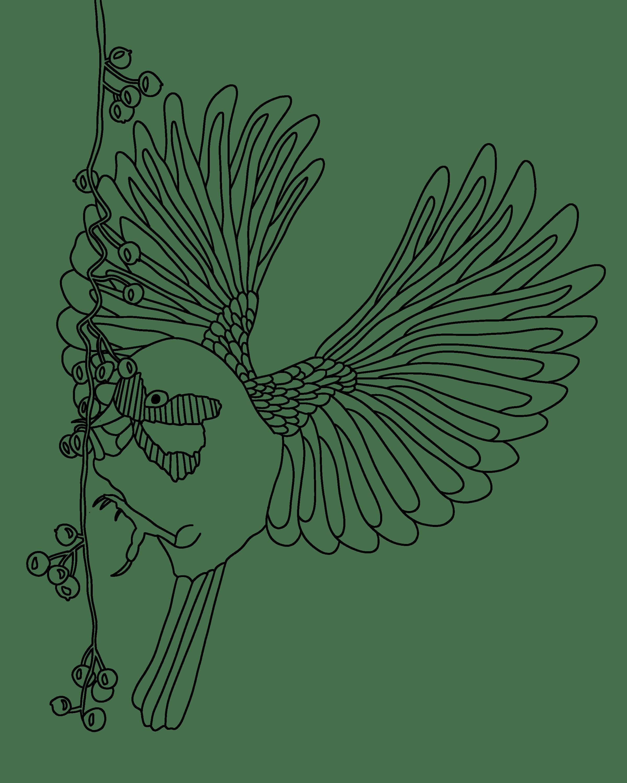 Tranh tô màu chú chim xòe cánh đẹp