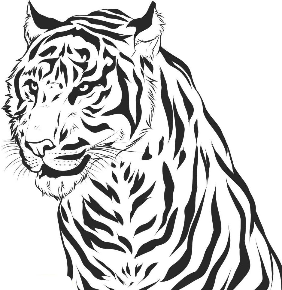 Tranh tô màu con hổ trông rất ngầu