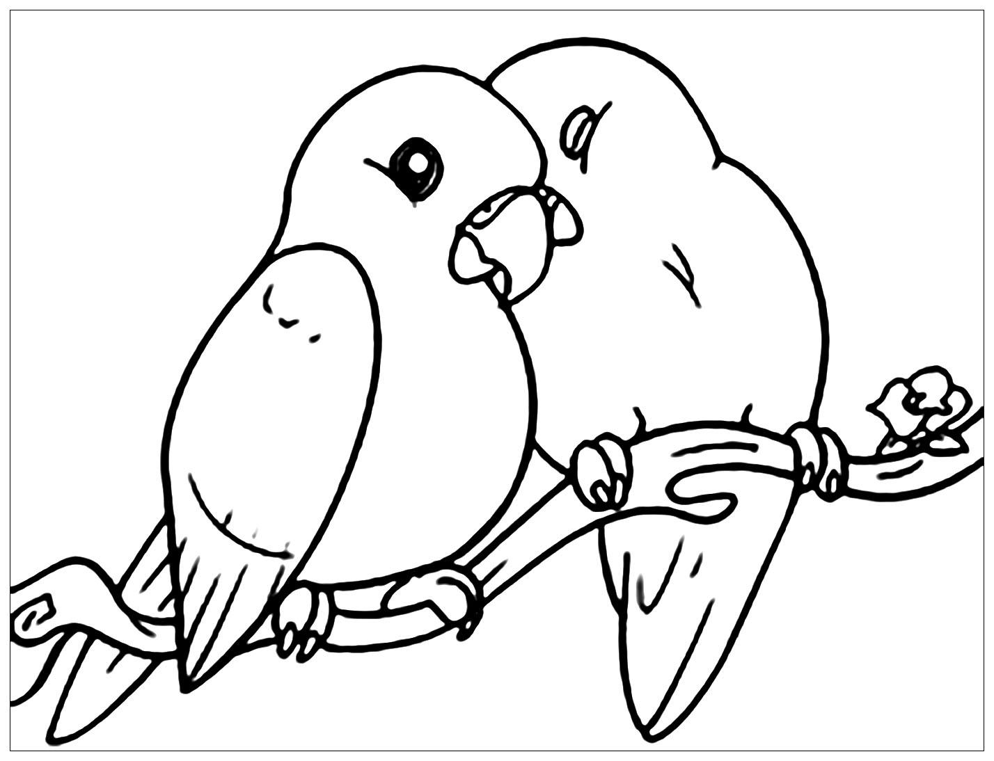 Tranh tô màu hai chú chim tựa vào nhau