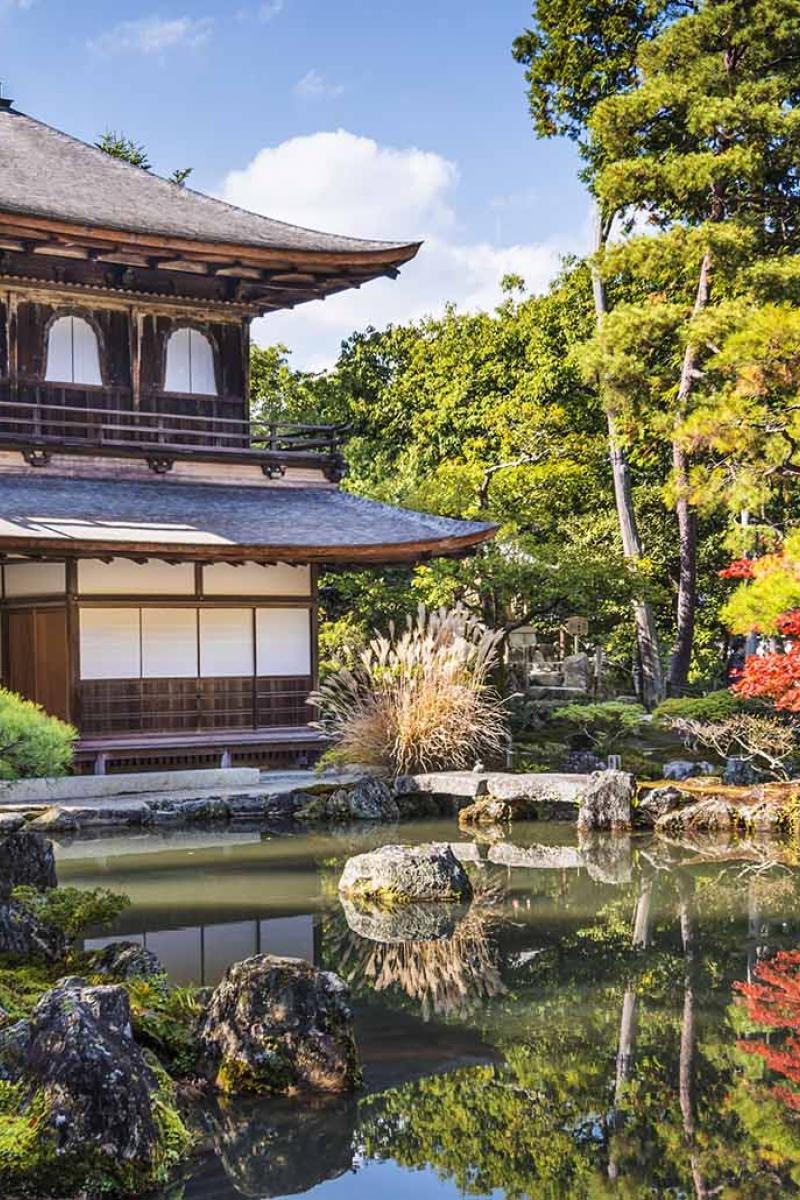Vườn sau của một nhà tại Nhật rất đẹp