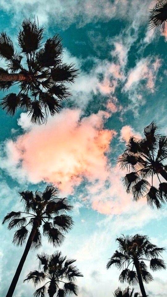 Bầu trời màu hè tươi đẹp