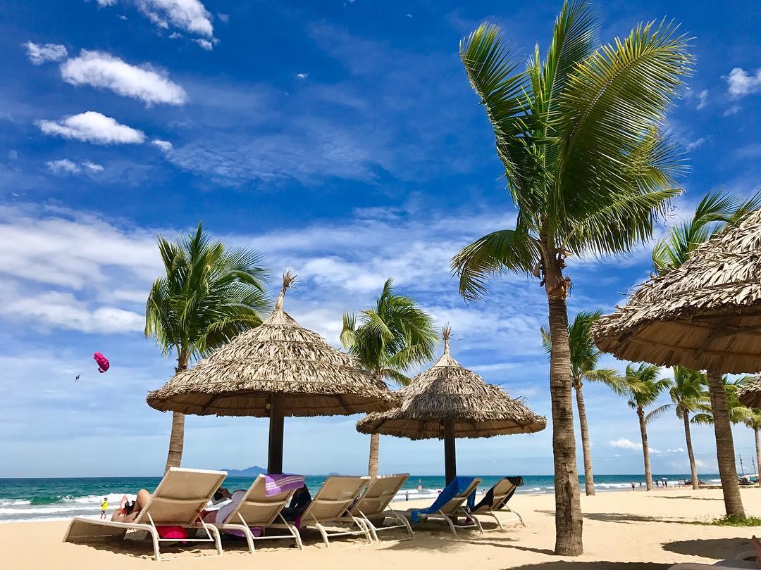 Biển và trời xanh ngắt cùng những cây dừa cảnh rất đẹp