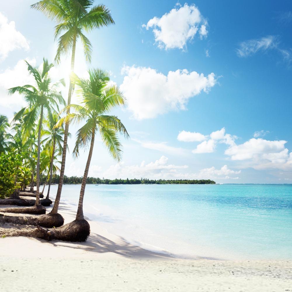 Biển xanh cát trắng và dừa biển xanh xanh