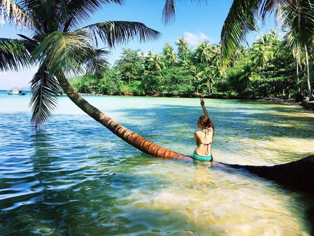 Cây dừa vươn mình trong nước biển cực đẹp
