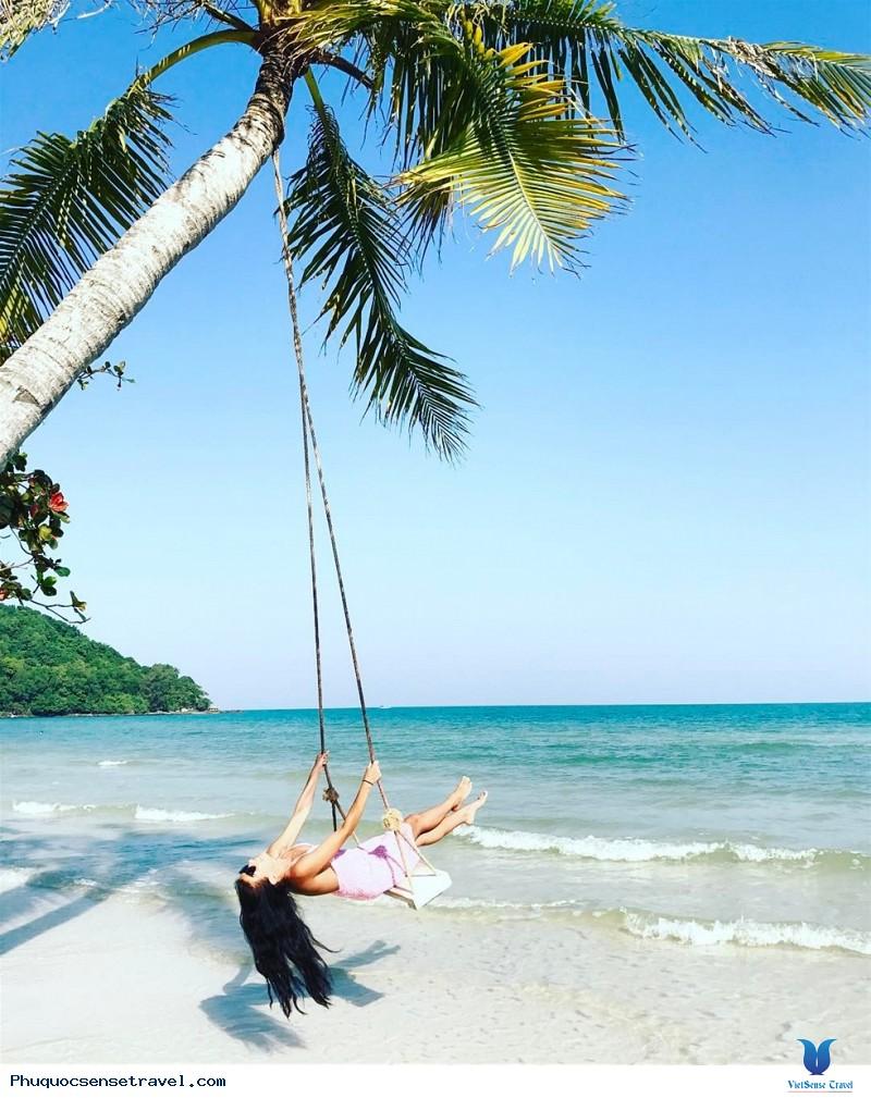 Dừa biển buộc xích đu cực đẹp