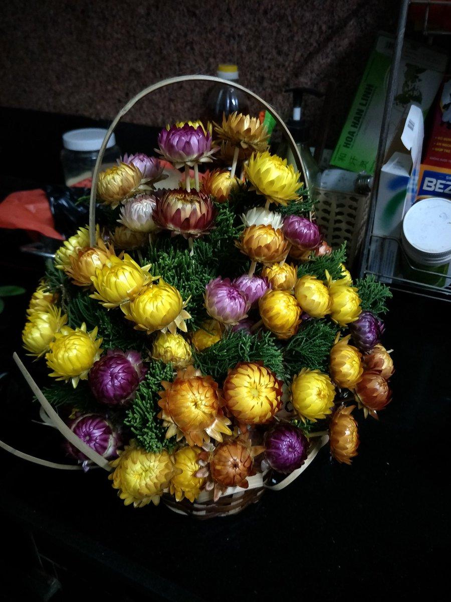 Giỏ hoa bất tử đẹp