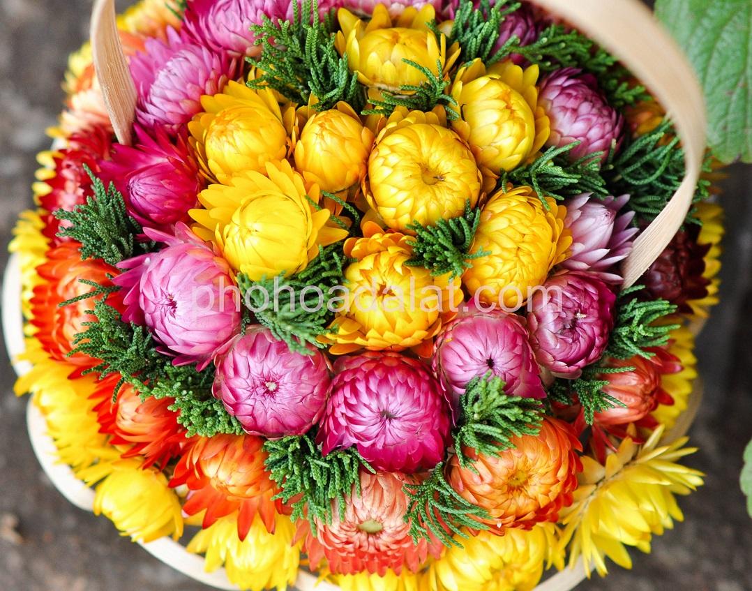 Giỏi hoa bất tử dành cho một tình yêu bất tử