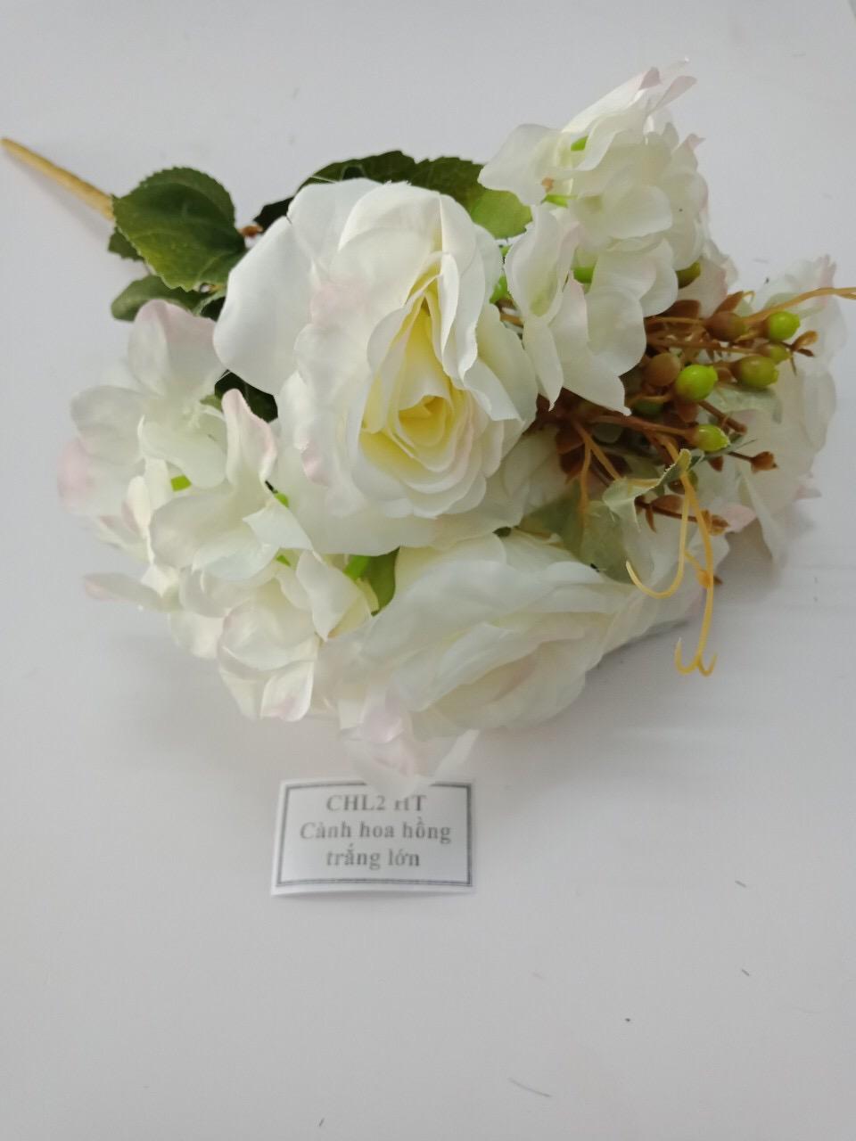 Hoa hồng trắng trang trí lại cực đẹp